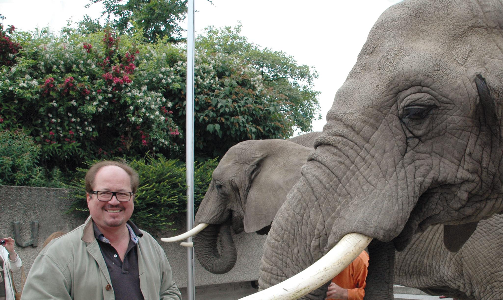 Slider_9_Elefanten Kopie